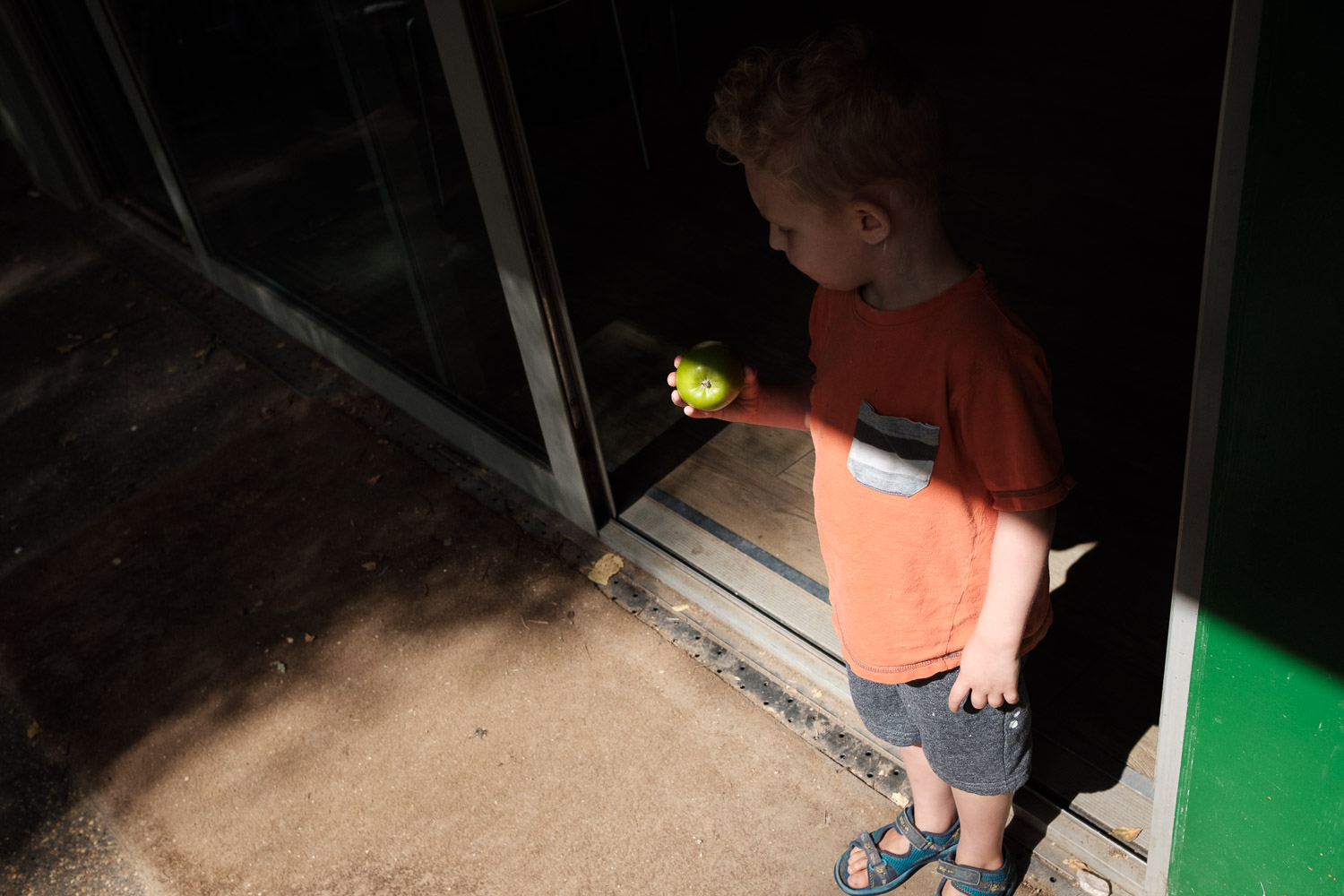 Boy holding an apple between light and shade